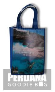 Goodie Bag Tersedia Dengan Bahan Flexi Jerman, Korea maupun Cina